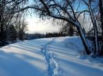Почистване на сняг и лед